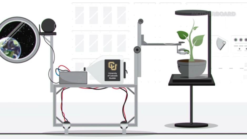 Robotic gardeners