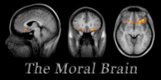 Moral brain wrap up