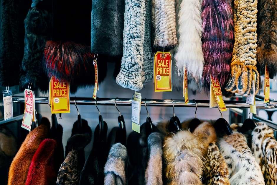 California ban fur
