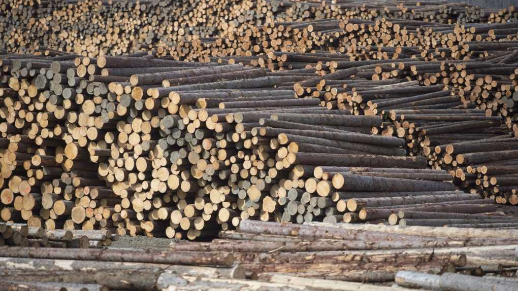 B.C. forest industry