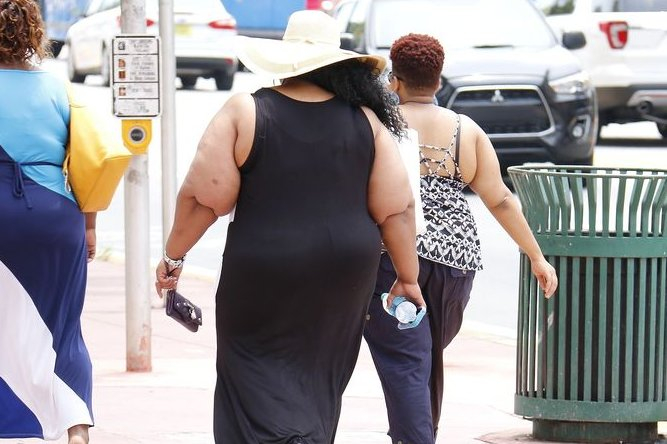 Obese by 2030