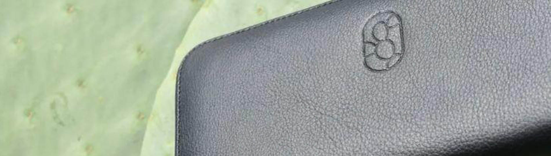 Two guys create 'leather' from cactus, will save 1 billion animals killed for fashion
